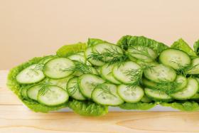 Dressing cu Marar si Verdeturi de Gradina pentru Salata de Castraveti BIO - LEBENSBAUM - 24g (3x8g)