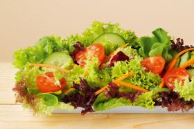Dressing pentru Salata de Verdeturi de Gradina BIO - LEBENSBAUM - 24g (3x8g)