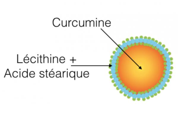 """Compozitia SLCP  LONGVIDA (Curcumin """"lipozomizat"""" in invelis de lecitina si acid stearic)"""